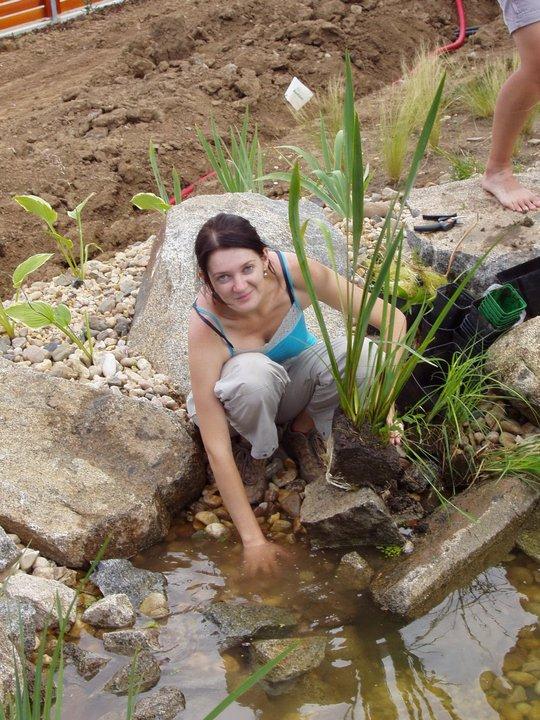 Zahrada - zahrada vodní rostliny