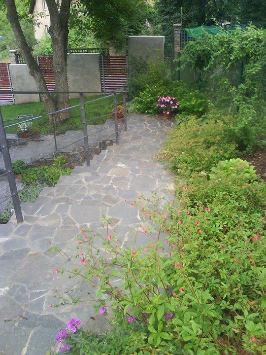 Zarostlé schody - Zahrada