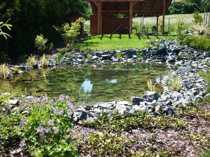 Zahradní jezírko - zrcadlení
