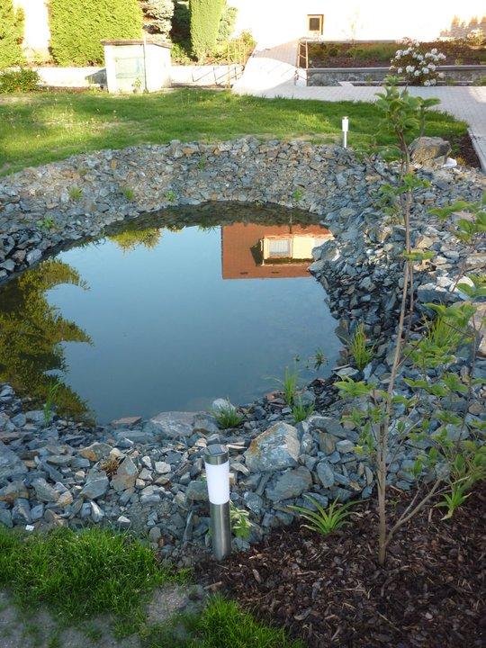 Zahradní jezírko - zrcadlo