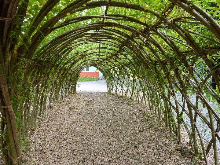 Zelený tunel