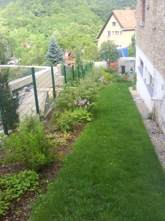 Úzký trávník