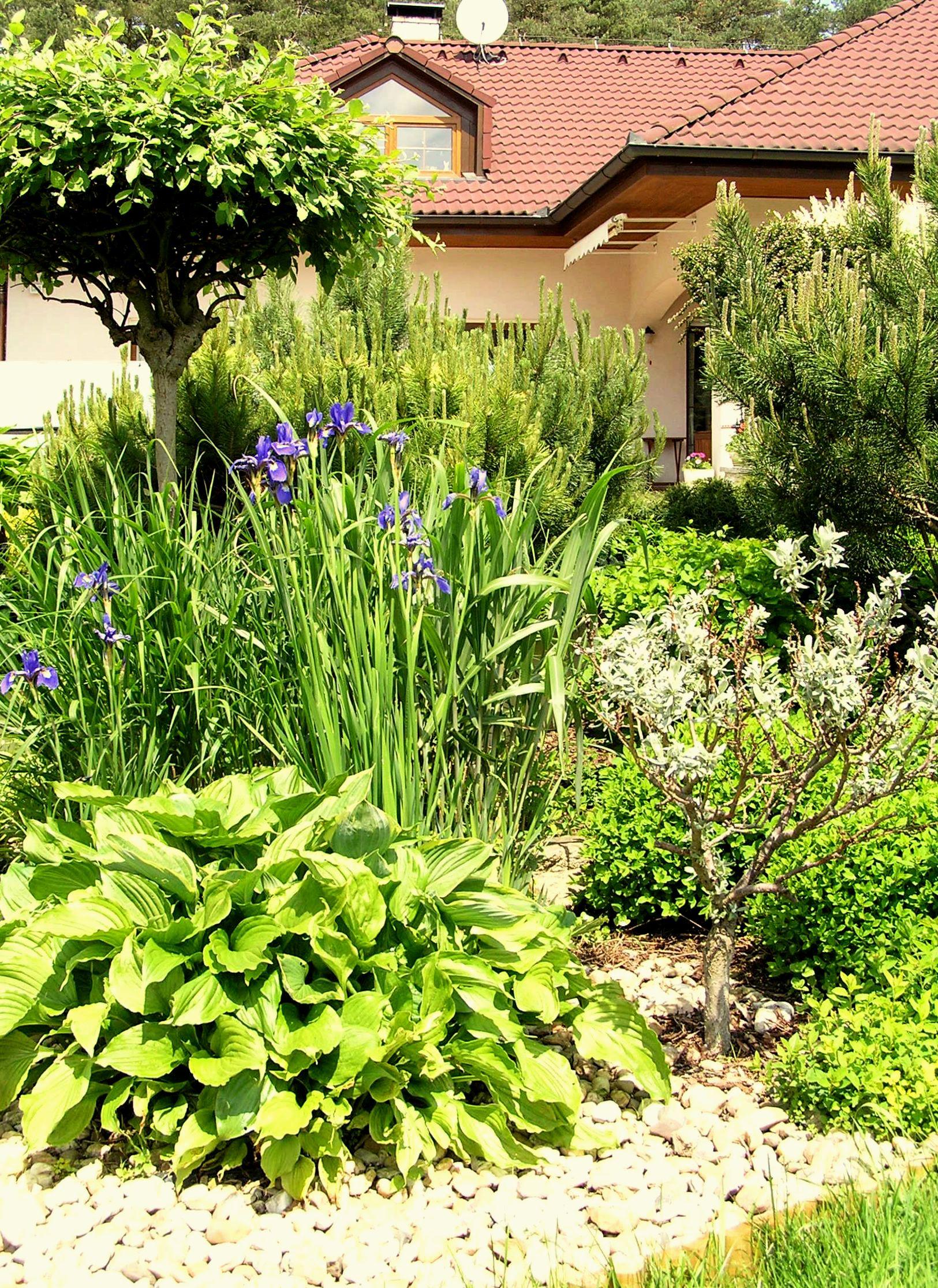 Zahradní koutek