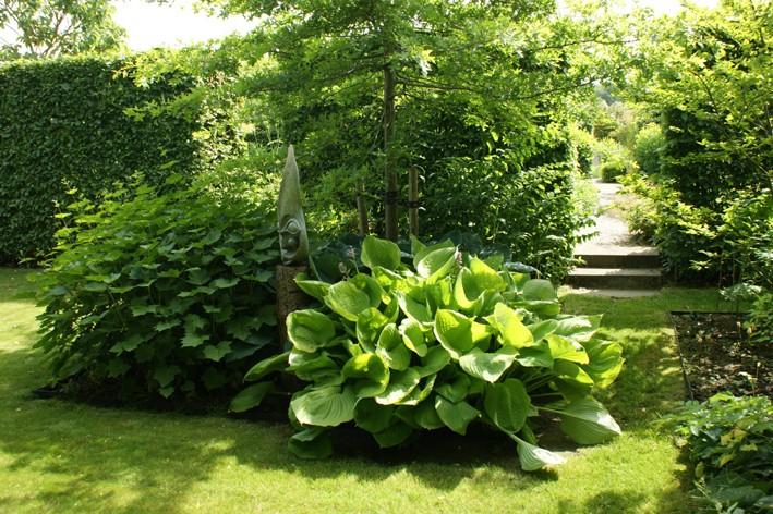 """""""Mimozemšťan"""" na zahradě"""
