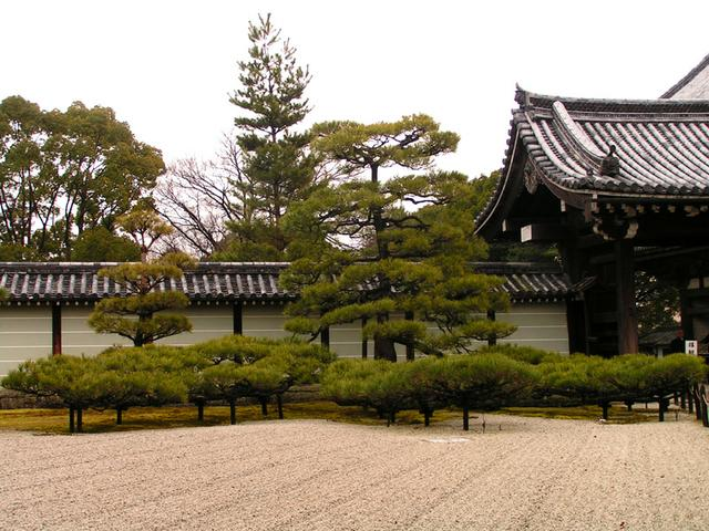 Zahrada Kjóto