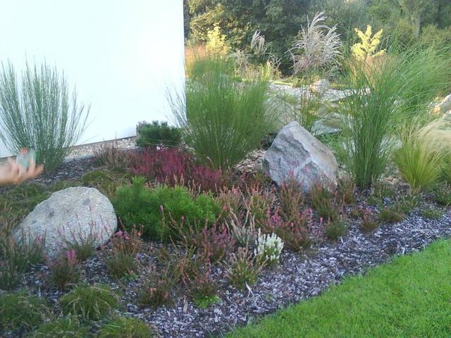 Zahrada s vřesy
