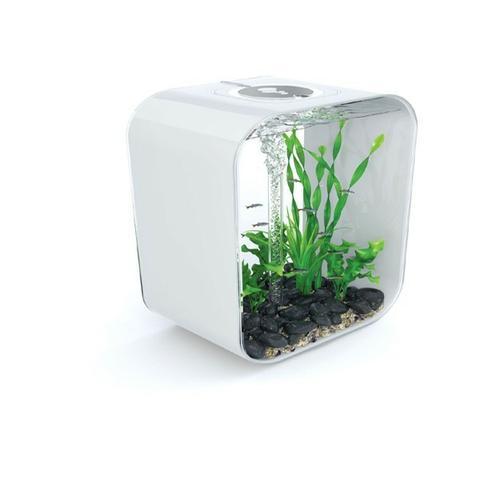 Bezúdržbové  akvárium BIORB