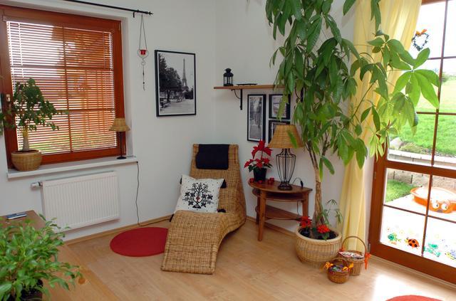 Křeslo v obývacím pokoji