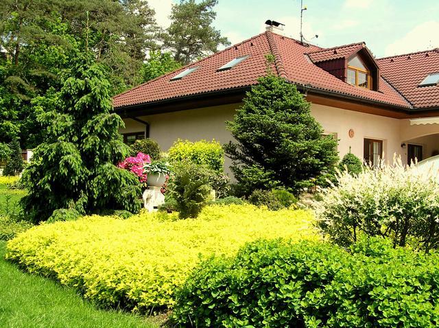 Zahradní zeleň