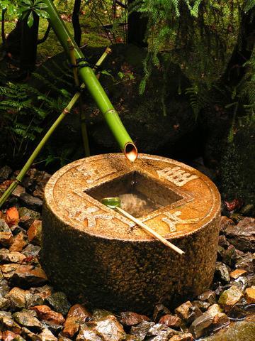 Pramen v zenové zahradě