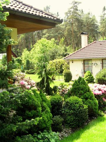 Kousek zahrady