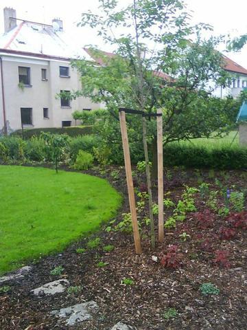 Zahrada rekonstrukce