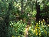 Zahradníkův pomník