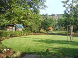 Zahrada revitalizace