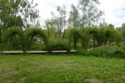 Zahradní živé stavby