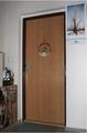 Bezpečnostní dveře  panelák