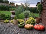 Blížící se podzim
