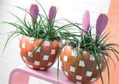 Květináče keramické červené