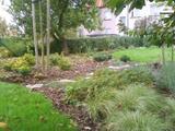 Podzimní záhony